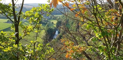 Herbsturlaub in Augustusburg